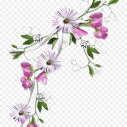 Borders And Frames Flower Clip Art