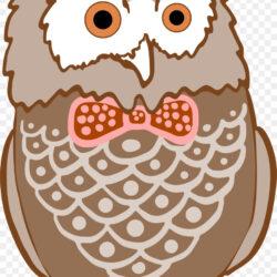 Clip Art Bird Image Barred Owl Cartoon Clipart Well Dressed