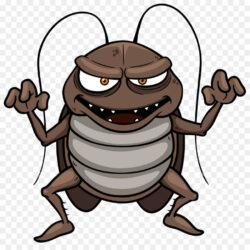 Cockroach Cartoon Clip Art Ferocious