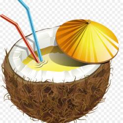 Coconut Milk Tropical Fruit Portable Network Graph Lenagold