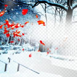 Winter Desktop Wallpaper Snow Landscape Winter