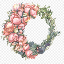 Wreath Floral Design Garland Illustrator Illustrat Beautiful Hand Painted