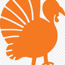 Ymca Dallas Turkey Trot Thanksgiving Day Thanks Giving