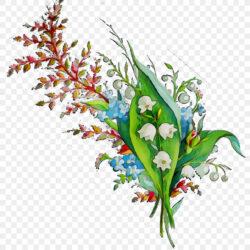Floral Design Cut Flowers Flower Bouquet Illustrat Green