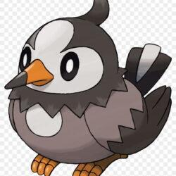 Starly Black And White Bird Pokemon