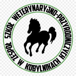 Zsp Kobylniki Boarding School Technician High Scho Grafika