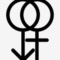 48 3 September 2013 Gender Icon No 8grc7